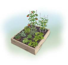 easy 4 x 4 summer garden bonnie plants