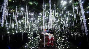 Lv Zoo Lights Watch Winter Light Spectacular At The Lehigh Valley Zoo