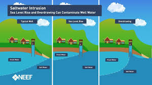 And Development Global Intrusion Causes For Impacts Saltwater Mitigation Geology
