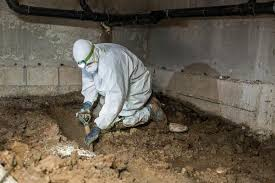 crawl space sump pump. Simple Pump Sump Pump Installation To Manage Excess Water In Mt Vernon In Crawl Space N
