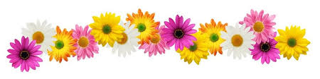 spring flowers border clipart. Contemporary Border Spring Flowers Clipart 7969 In Border R