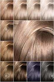 Sample Hair Colors Chart Color Chart For Tints Hair Color Palette With A Wide Range Of