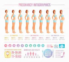 Pregnancy Growth Week By Week Chart Unmistakable Pregnancy Belly Growth Chart Week Belly Growth