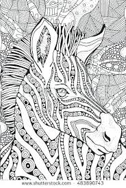 zebra coloring pages for s zebra coloring book free printable zebra coloring pages for kids colouring