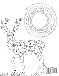 Books About Dream Catchers Dream Catcher the tree of life An elaborate Powerful Colouring 64