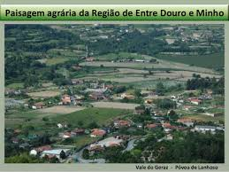 Resultado de imagem para paisagem rural no vale do sousa