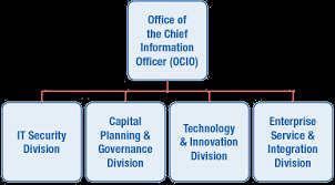 Office Of The Chief Information Officer Cio Organization