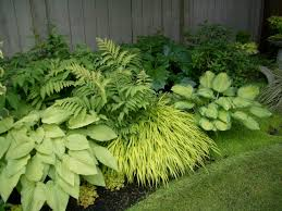 Small Picture Garden Design Garden Design with Perennial Flower Bed Design