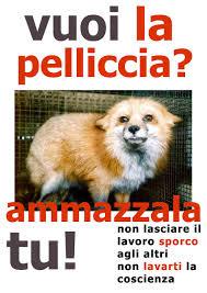 2010 la protesta contro la vivisezione continua grazie agli animalisti |  Tutto Zampe