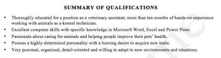 résumé writing  how to write a summary of qualifications