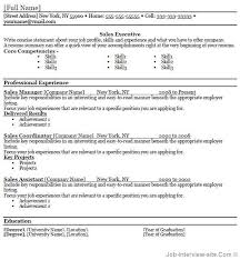 professional cv guidance   template in word definitionprofessional cv guidance mr paul toal guidance counselling and careers testing free  top professional resume