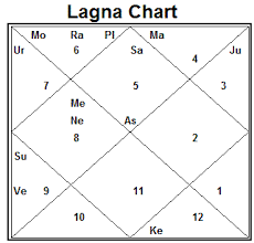 Vedic Astrology 2010