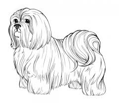 Small Picture Dog Breed Coloring Pages Coloring Furry Friends Pinterest