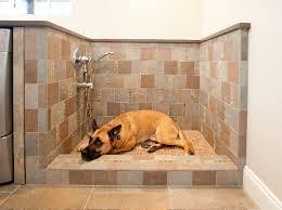 custom-walk-in-showers-Laundry-Room-Traditional-with-custom-walk-in-dog- shower | beeyoutifullife.com