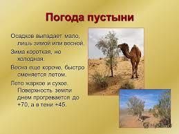 Презентация на тему Зона пустынь В России полупустыни и пустыни  3 Погода