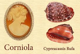 the corniola cornelian cameos is for sure the most famous cameo when you think to a traditional cameo you think to this
