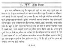 essay on domestic animals in hindi language contoh critical book essay on domestic animals in hindi language