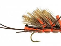 Salmon Fly Patterns Fascinating Dry Fly Stoneflies And Salmonflies Catch Fly Fishing Billings MT
