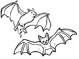 Small Picture Extraordinary Bat Coloring Page 29 mosatt