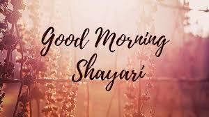 good morning shayari photo in