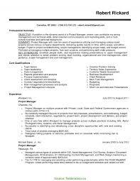 Special Project Management Cv Skills List Of For Resume Fieldstatio