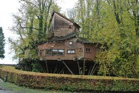 Garden Buildings Treetop Adventures  Earth Designs Garden The Treehouse Restaurant Alnwick