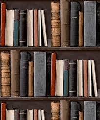 LIBRARY BOOKSHELF REALISTIC BOOKCASE WALLPAPER POB-33-01-6