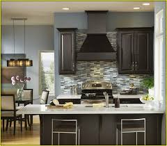 What Color To Paint Kitchen With Dark Cabinets Simple Ideas