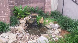 water features and native plants