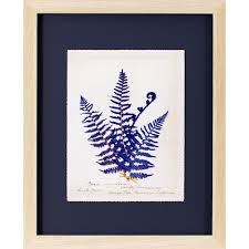 decor therapy 22 in x 18 in fern on indigo printed framed wall art on framed fern wall art with decor therapy 22 in x 18 in fern on indigo printed framed wall art