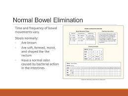 Stool Odor Chart Chapter 23 Bowel Elimination Bowel Elimination Bowel