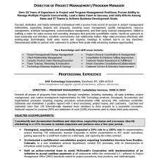 Executive Summary In Resume Executive Summary Example Resume
