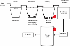Flow Diagrams Of Oxidation Ponds At Twwtp 1 Secondary Ef