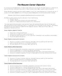 General Resume Objective Examples Magnificent Examples Of Objective In A Resume Letter Resume Directory