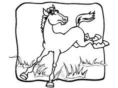 Small Picture free animals horse printable coloring pages for kindergarten