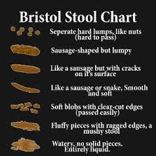Bristol Stool Chart Gifts Gift Ideas Zazzle Uk