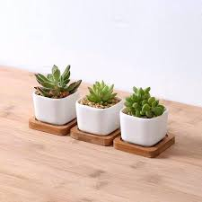 rectangular ceramic planter how to clean plant pots planters square white small outdoor garden simple plastic