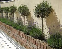 Small Picture Front garden design ideas low maintenance