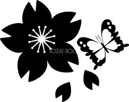 白黒蝶と桜のかわいい無料イラスト 春41387 素材good