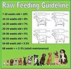 Percentage Feeding Chart Raw Feeding For Dogs Raw Pet