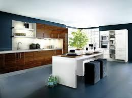 Contemporary Kitchens Designs Contemporary Kitchen Design Design Ideas With Island Aio