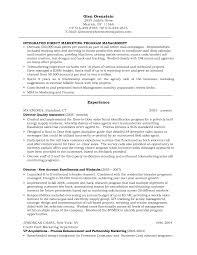 Resume Direct Sales Resume