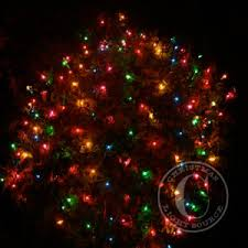 Multi Color Net Lights