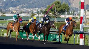 Speed Index For Horses Chart Horse Racing Wikipedia