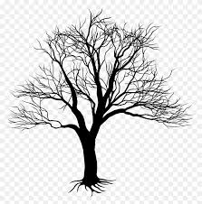 Clip Art Family Tree Roots Clip Art Tree With Roots Png Stunning
