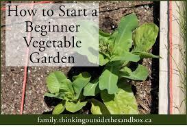 how to start a beginner vegetable garden thinking outside the sandbox family