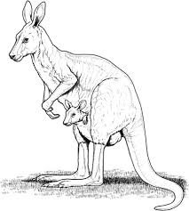 Small Picture Australian animals coloring pages Free Printable Pictures