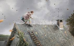 handywoman on the roof