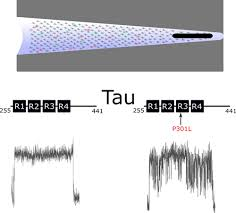 Mechanisms of Heparin-Induced Tau Aggregation Revealed by a Single  Nanopore.,ACS Sensors - X-MOL
