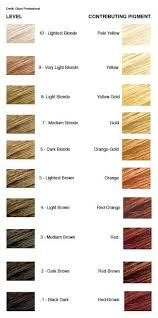 Ion High Lift Color Chart Ion Highlift Neutral Blond Those Tones You Want Are In The